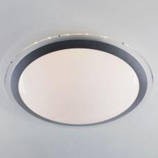Потолочный светодиодный светильник с пультом ДУ Eurosvet Fusion 40004/1 LED матовое серебро