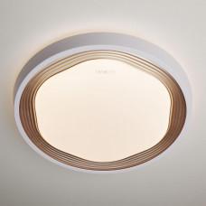 Потолочный светодиодный светильник с пультом ДУ Eurosvet Range 40005/1 LED кофе